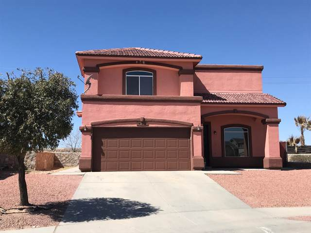 821 Desert Bush Drive, Horizon City, TX 79928 (MLS #842538) :: Summus Realty