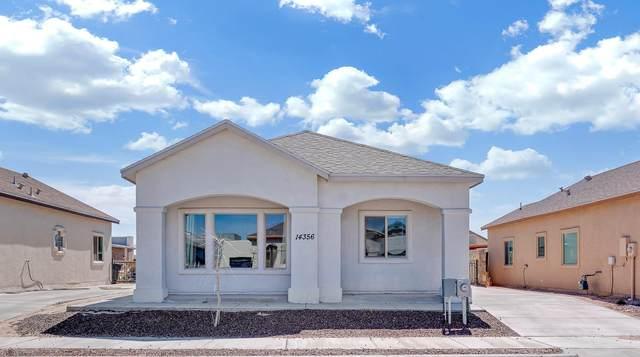 14356 Seth Payne Drive, Horizon City, TX 79928 (MLS #842631) :: Summus Realty