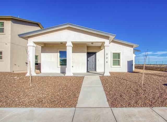 224 Dora Baltea Place, Horizon City, TX 79928 (MLS #842744) :: Summus Realty