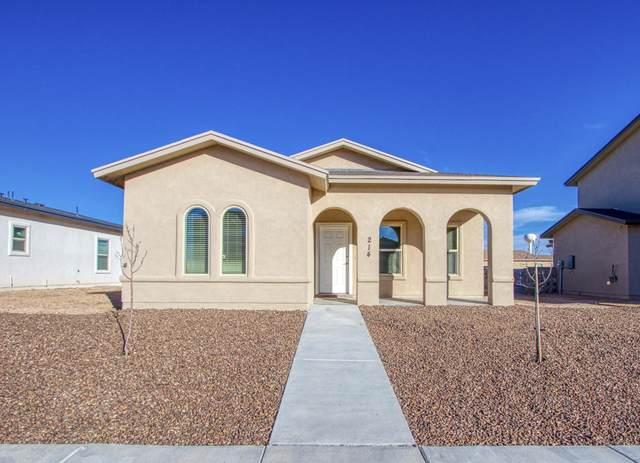 228 Dora Baltea Place, Horizon City, TX 79928 (MLS #842748) :: Red Yucca Group
