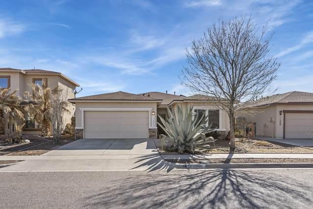 11202 Redstone Peak Place, El Paso, TX 79934 (MLS #842970) :: Summus Realty