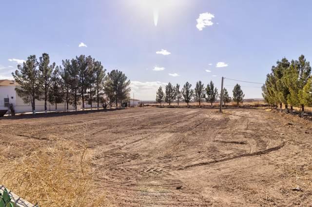 11908 Dindinger, San Elizario, TX 79849 (MLS #842984) :: Summus Realty