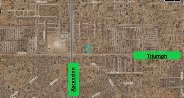 0 Triumph Street, El Paso, TX 79938 (MLS #843008) :: Summus Realty