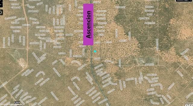 2 Pekin Avenue, El Paso, TX 79938 (MLS #843199) :: Preferred Closing Specialists