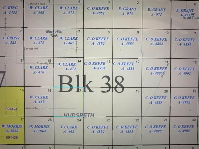 38 SEC 17 Psl Sunset Ranches #615 Lot 13, Sierra Blanca, TX 79851 (MLS #843247) :: Mario Ayala Real Estate Group