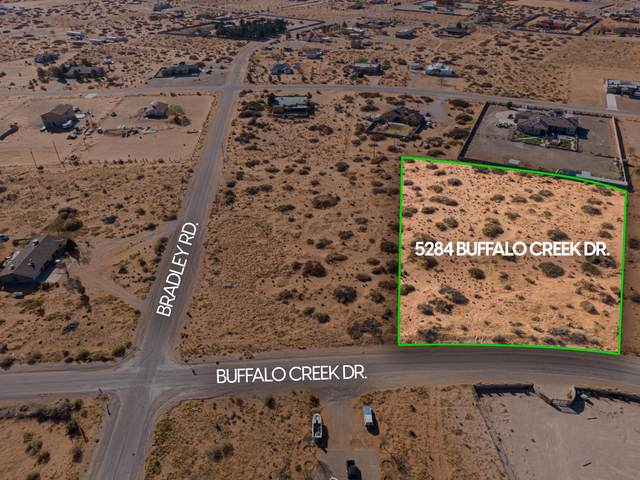 5284 Buffalo Creek Dr Drive, El Paso, TX 79938 (MLS #843276) :: Summus Realty