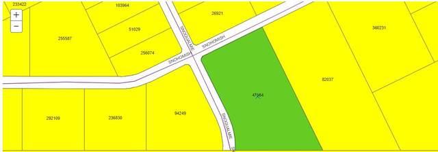 15500 Snohomish Loop, El Paso, TX 79938 (MLS #843309) :: The Matt Rice Group