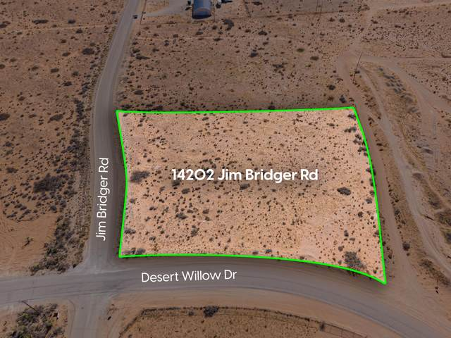 14202 Jim Bridger Road, Clint, TX 79836 (MLS #843427) :: Summus Realty