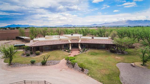 7003 Mcnutt Road, Anthony, NM 88021 (MLS #843469) :: The Purple House Real Estate Group