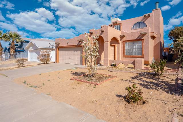 12139 Desert Quail Avenue, El Paso, TX 79936 (MLS #843548) :: Summus Realty