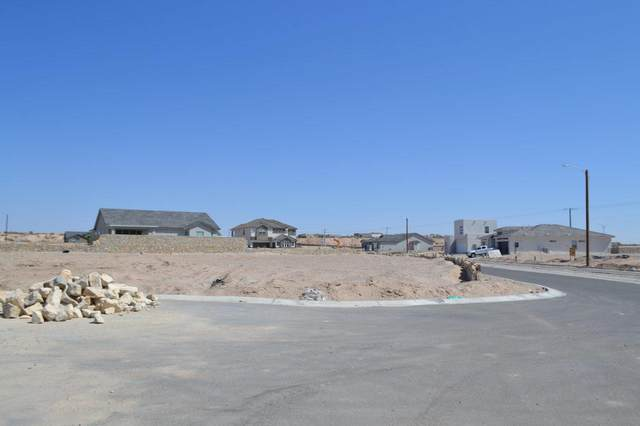 873 Cyrstal Deer Drive, El Paso, TX 79928 (MLS #843624) :: Preferred Closing Specialists