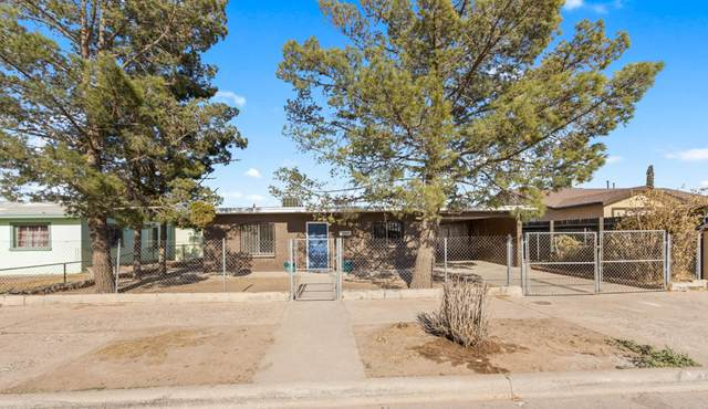 9375 Carranza Drive, El Paso, TX 79907 (MLS #843706) :: Summus Realty