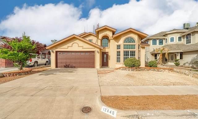 12445 Paseo Alegre Drive, El Paso, TX 79928 (MLS #843746) :: Summus Realty