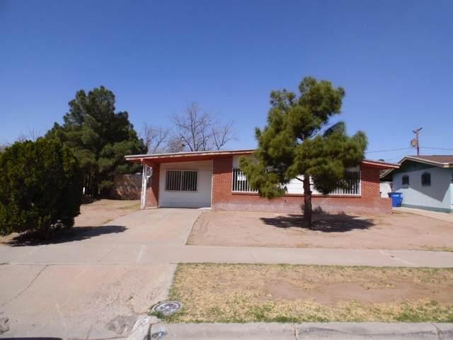 189 Flint Circle, El Paso, TX 79915 (MLS #843749) :: The Purple House Real Estate Group