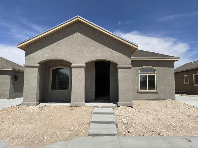 14361 Nick Drahos Lane, Horizon City, TX 79928 (MLS #843763) :: Summus Realty