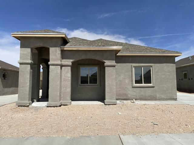 14372 Tobe Davis Drive, El Paso, TX 79928 (MLS #843790) :: The Matt Rice Group