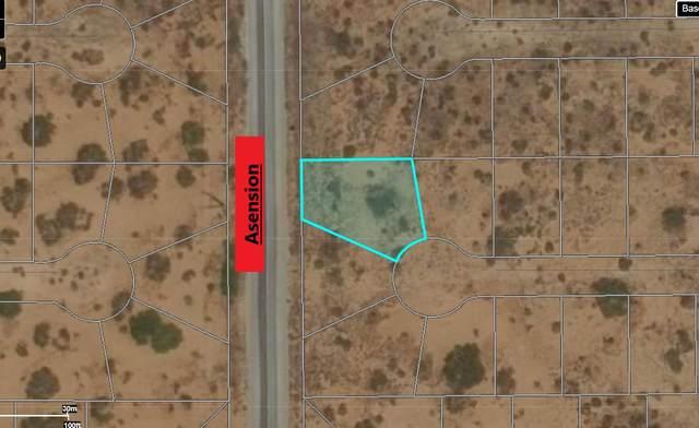 6 Ascencion Street, El Paso, TX 79938 (MLS #843859) :: Preferred Closing Specialists