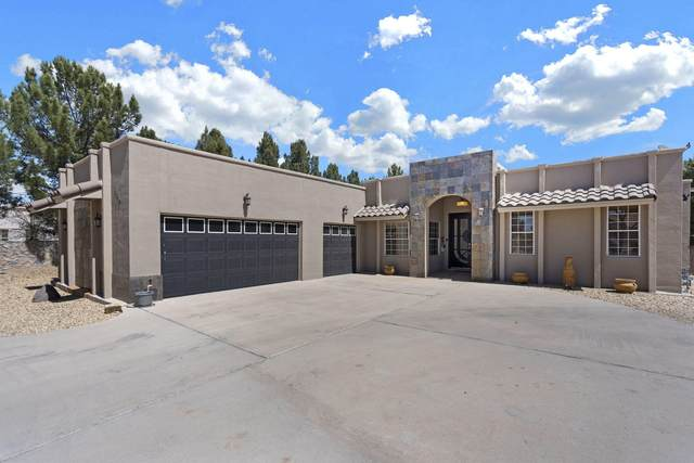 362 Wild Willow Drive, El Paso, TX 79922 (MLS #843923) :: The Matt Rice Group