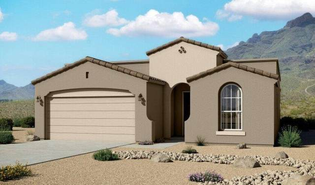 229 Anglesy Place, El Paso, TX 79928 (MLS #843924) :: Preferred Closing Specialists