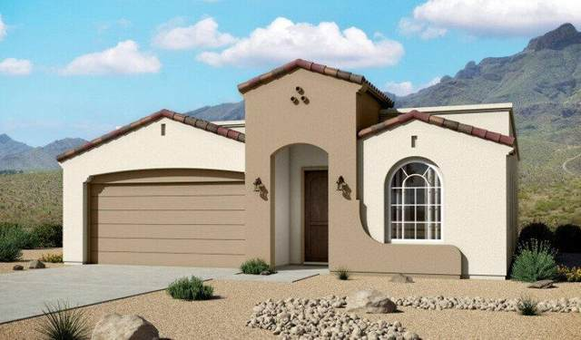 213 Anglesy Place, El Paso, TX 79928 (MLS #843926) :: The Purple House Real Estate Group