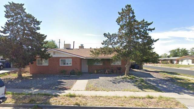 520 Castile Avenue, El Paso, TX 79912 (MLS #843978) :: Jackie Stevens Real Estate Group brokered by eXp Realty