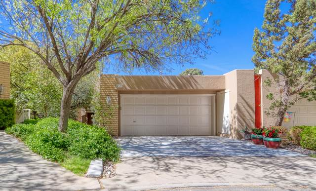 5937 Mira Hermosa Drive, El Paso, TX 79912 (MLS #843980) :: Jackie Stevens Real Estate Group brokered by eXp Realty