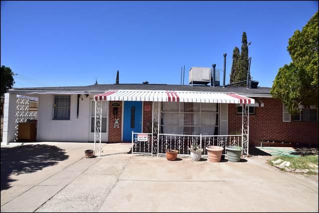 9115 Mount Olympus Drive, El Paso, TX 79924 (MLS #843996) :: Jackie Stevens Real Estate Group brokered by eXp Realty