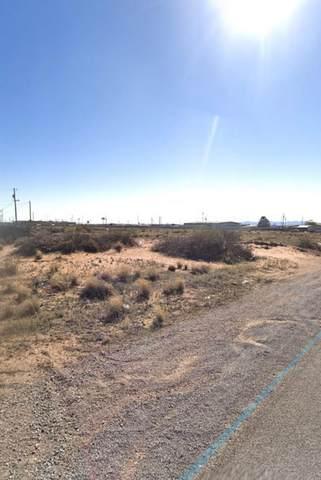 11656 Dade Road, El Paso, TX 79938 (MLS #844004) :: Summus Realty