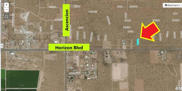 9 Horizon Boulevard, El Paso, TX 79938 (MLS #844021) :: Preferred Closing Specialists