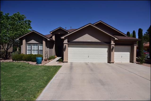 541 Shadow Willow Drive, El Paso, TX 79922 (MLS #844102) :: The Purple House Real Estate Group