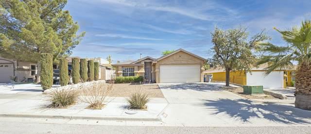 762 Hempstead Drive, El Paso, TX 79912 (MLS #844154) :: The Purple House Real Estate Group