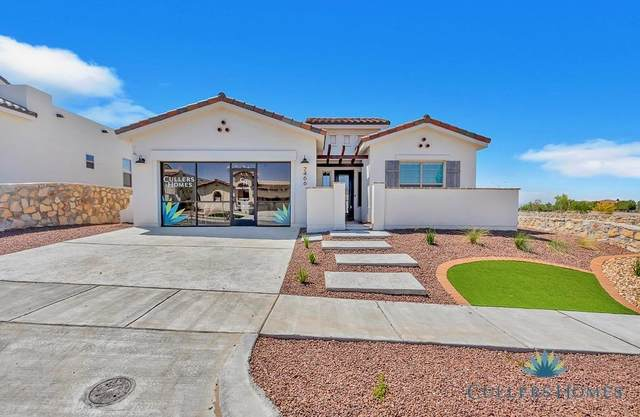 317 Emerald Pearl Drive, El Paso, TX 79928 (MLS #844187) :: The Matt Rice Group