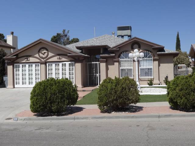 1369 James Dudley Drive, El Paso, TX 79936 (MLS #844190) :: Mario Ayala Real Estate Group