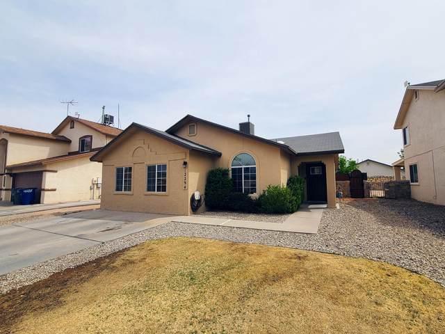 12294 Tierra Brisa Drive, El Paso, TX 79938 (MLS #844279) :: The Matt Rice Group