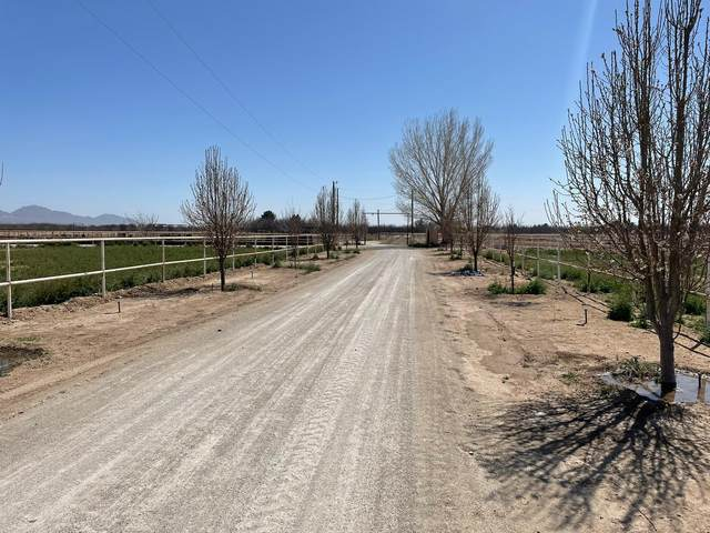 525 Ojito De Madrid, Anthony, NM 88021 (MLS #844287) :: Summus Realty