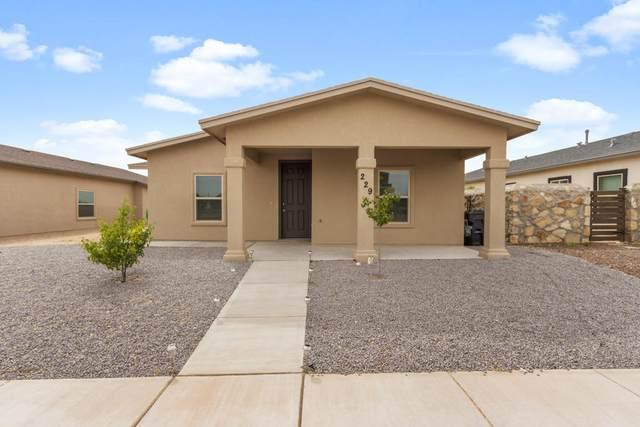 229 Lago Maggiore Street, El Paso, TX 79928 (MLS #844515) :: Summus Realty