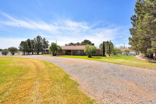 14002 N North Loop Drive, Clint, TX 79836 (MLS #844516) :: The Purple House Real Estate Group