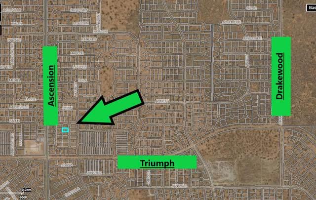 7 Pekin Avenue, El Paso, TX 79938 (MLS #844616) :: Summus Realty