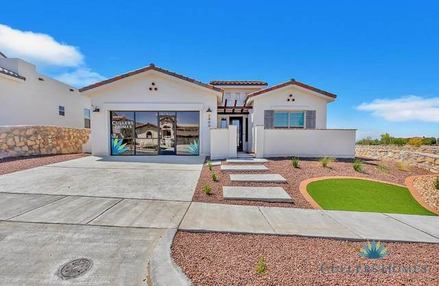 308 Emerald Pearl Drive, El Paso, TX 79928 (MLS #844673) :: The Matt Rice Group