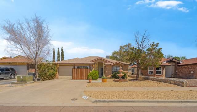 11545 Caballo Lake Drive, El Paso, TX 79936 (MLS #844680) :: Summus Realty