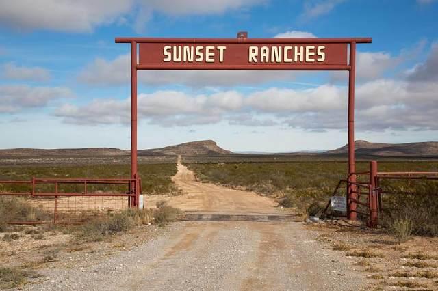 110 Price Avenue, Ft Hancock, TX 79839 (MLS #844699) :: Summus Realty