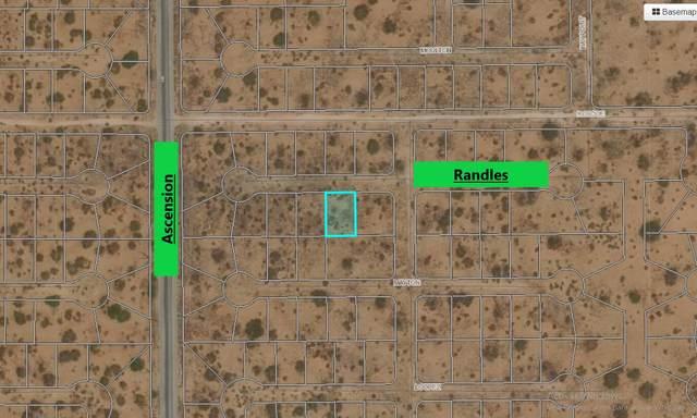 2 Randles, El Paso, TX 79938 (MLS #844766) :: Summus Realty