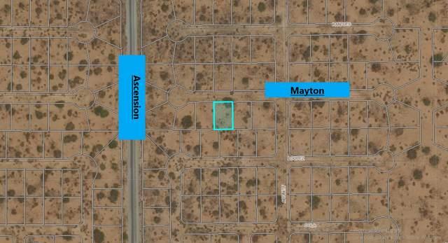 3 Mayton Avenue, El Paso, TX 79938 (MLS #844769) :: Summus Realty