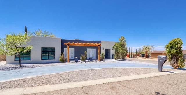 321 Barbaree Drive, El Paso, TX 79912 (MLS #844838) :: Summus Realty