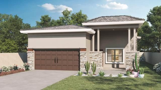 345 Fray Olguin Drive, Socorro, TX 79927 (MLS #844852) :: Summus Realty