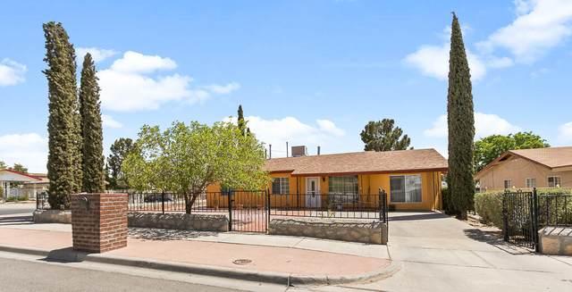 260 E Borderland Road, El Paso, TX 79932 (MLS #844888) :: The Purple House Real Estate Group