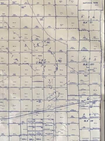 120 SEC 9 Psl N1/2 Sw1/4 Nw1/4 (20 Acres, Sierra Blanca, TX 79851 (MLS #844961) :: Summus Realty