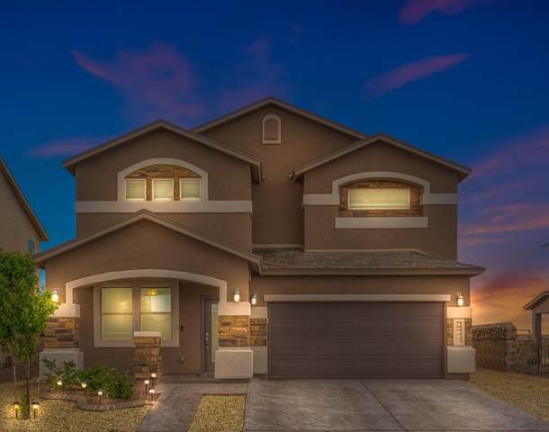 13976 Flora Vista Avenue, Horizon City, TX 79928 (MLS #844971) :: Summus Realty