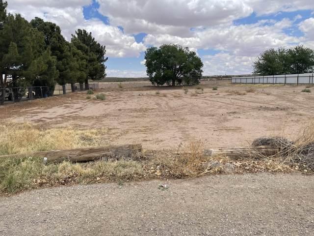 15865 Ponce De Leon Drive, Fabens, TX 79838 (MLS #844972) :: Summus Realty