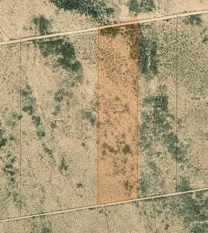 TBD 46 SEC 21/28 PSL SUNSET RANCH., Sierra Blanca, TX 79851 (MLS #845003) :: Summus Realty